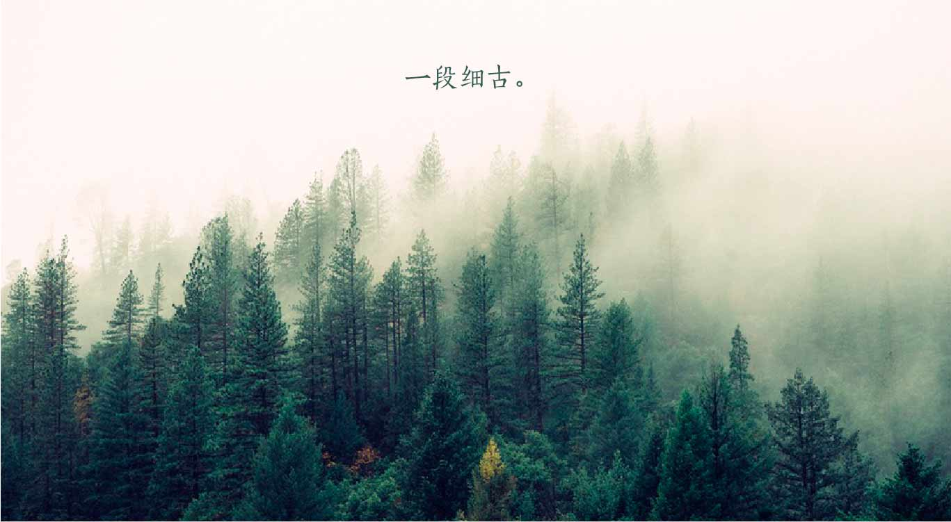 xiangjie-33